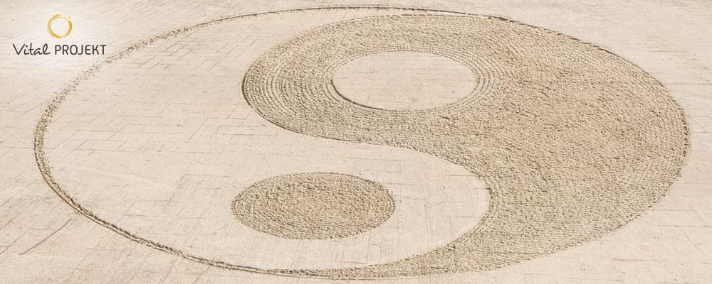 Yin-Yang-Symbol   vital-projekt.com
